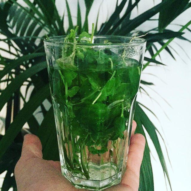 Mita Herbata napar mitowy jest orzewiajca i aromatyczna poprawia nastrjhellip